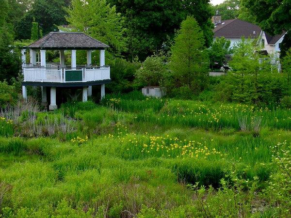 Frelinghuysen Arboretum, New Jersey
