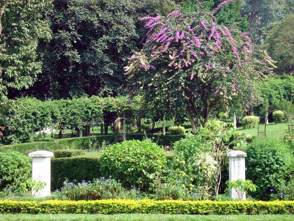 Peradeniya Botanic