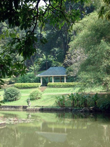 Peradeniya Botanic, Kandy