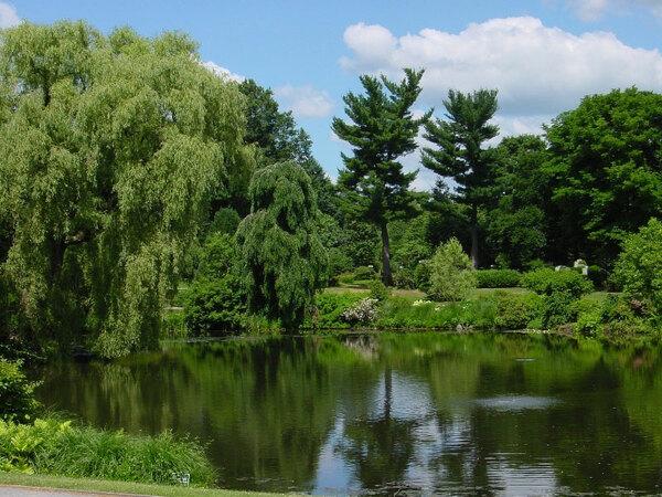 Mount Auburn Cemetery Garden, Cambridge