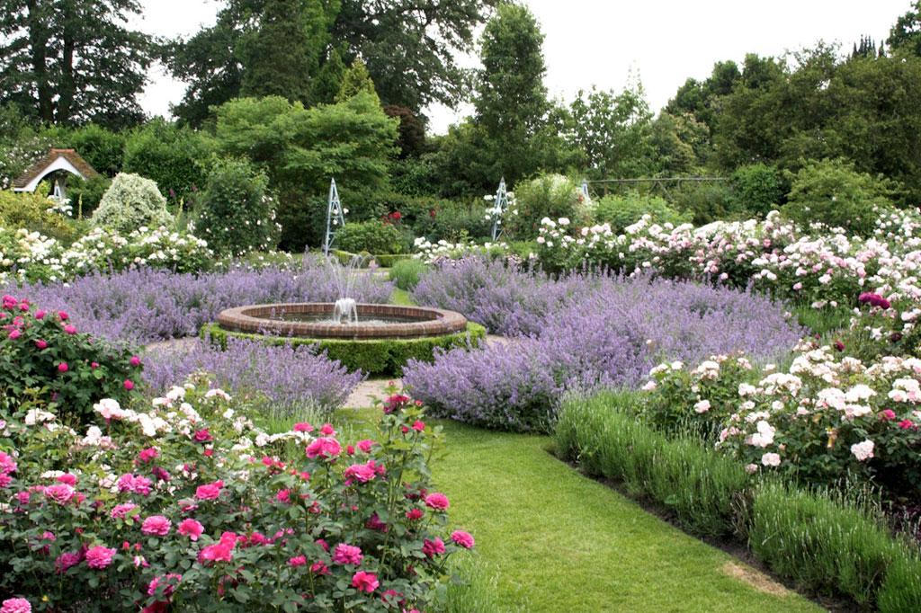 Borde hill garden for Garden design ideas hill