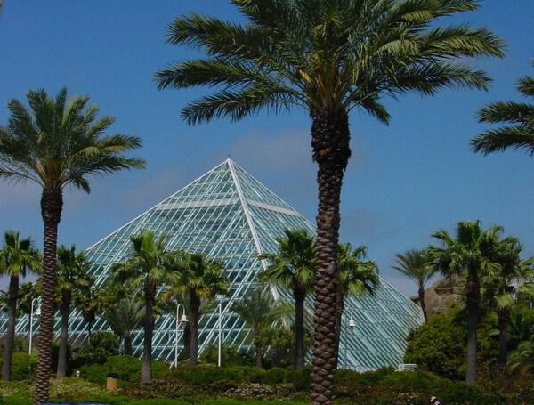 Pyramid, Moody Gardens