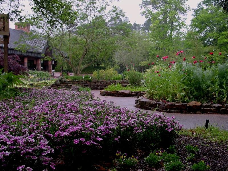 Mercer Arboretum, Texas