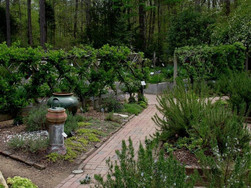 Merveilleux North Carolina Botanical Garden