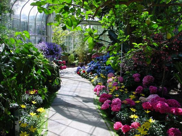 Seymour Botanical Conservatory, Tacoma