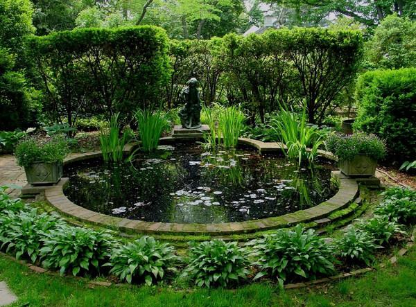 Pond, Tudor Place Garden