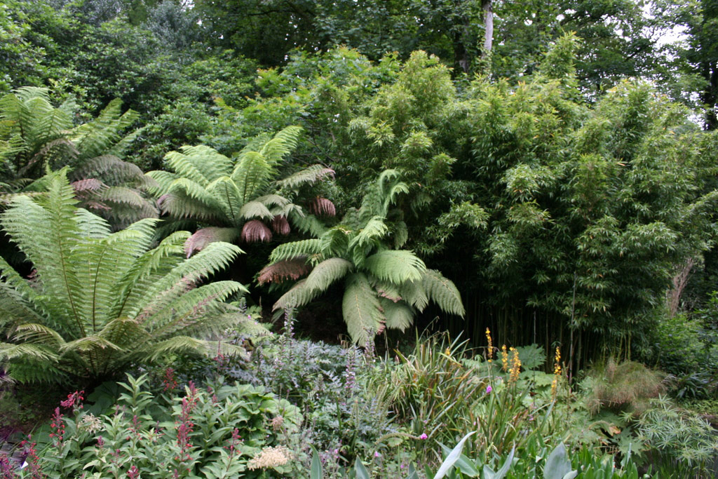 The Lost Gardens of Heligan, Summer