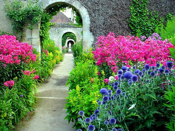 Chateau de Canon Garden