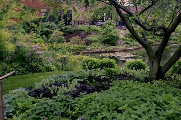 Holden Arboretum Garden