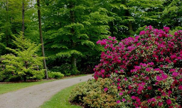 Holden Arboretum Garden, Ohio