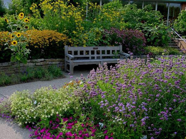 Matthaei Garden