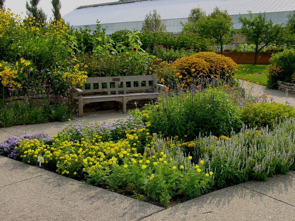 Bench, Matthaei Garden