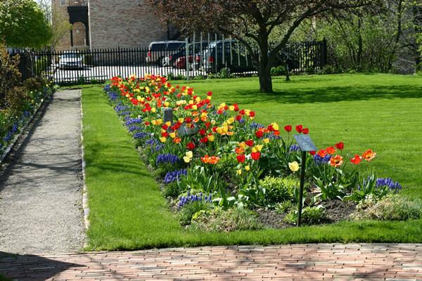 Eldon House Garden, London