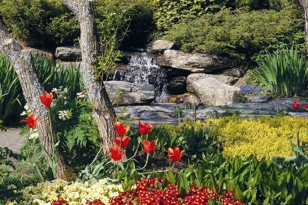Roger-Van den Hende Botanical Garden