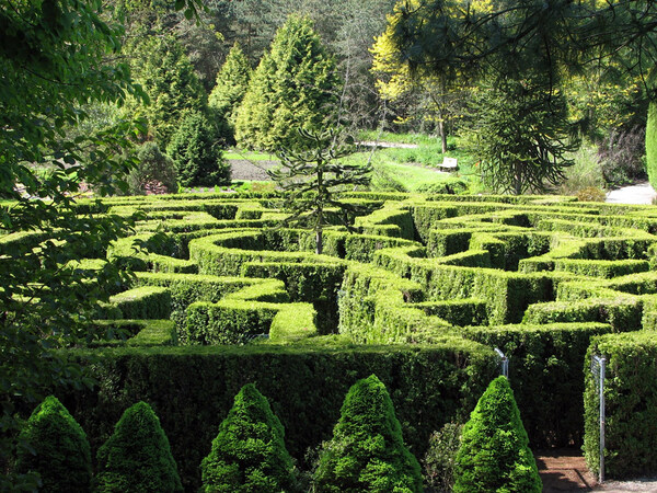 Maze, VanDusen Botanical Garden