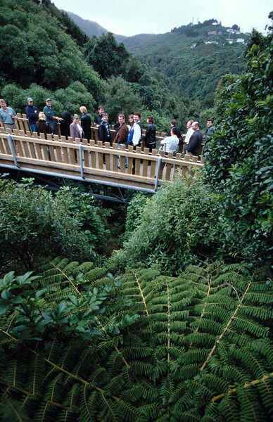 Otari-Wilton's Bush Native Botanic Garden, New Zealand