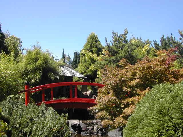 Royal tasmanian botanical gardens for Garden design hobart