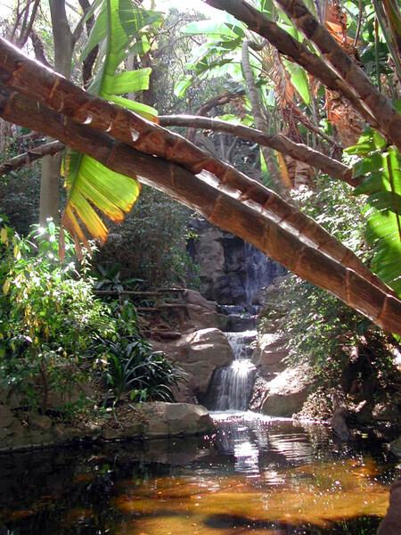 Pretoria National Botanic Garden, Gauteng