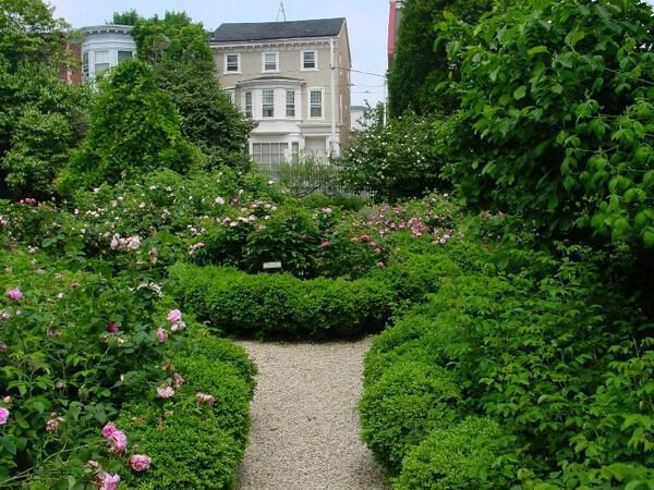 Wyck Garden