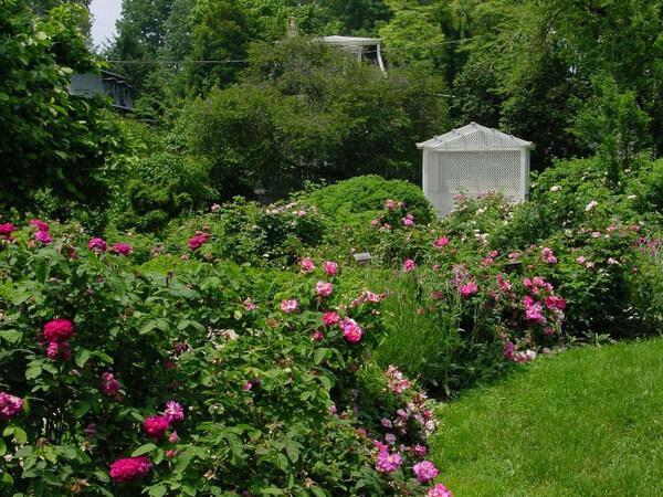 Wyck Garden, Pennsylvania