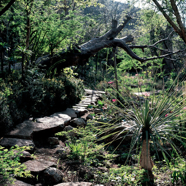 Gardens of the Lost City, Sun City
