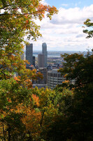Medium mount royal park montreal original
