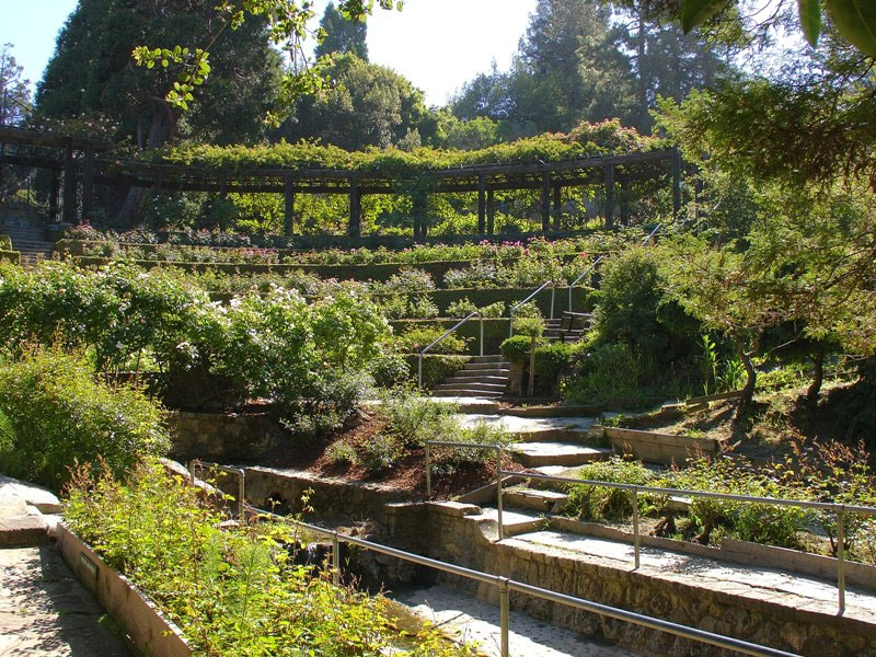 Amphitheater, Berkeley Rose Garden