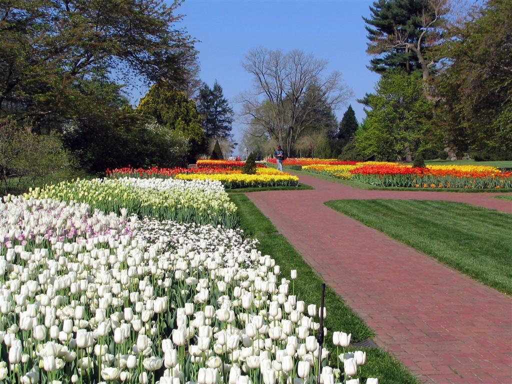 where is kennett square pa on the map with Longwood Gardens on Longwood Gardens Pennsylvania together with Hickory North Carolina besides Personal Trainer Ken t Square Pa in addition File Longwood Garden 002 further Longwood Gardens.