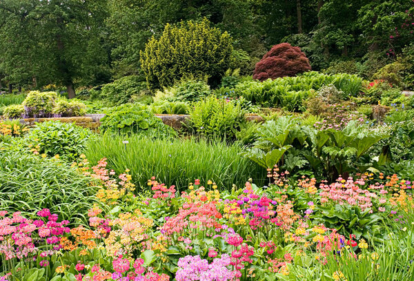 Streamside, RHS Garden Harlow Carr