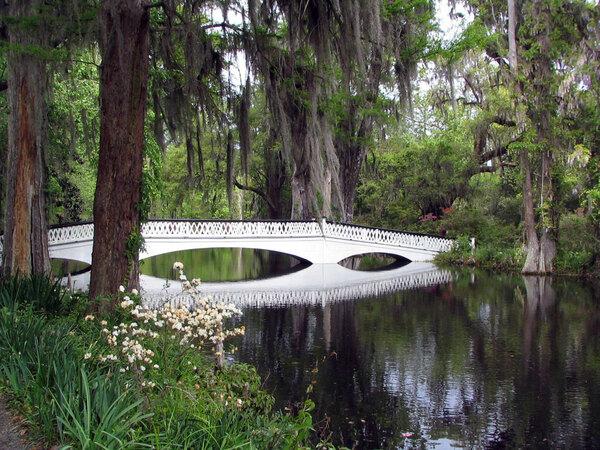 Bridge, Magnolia Plantation Garden