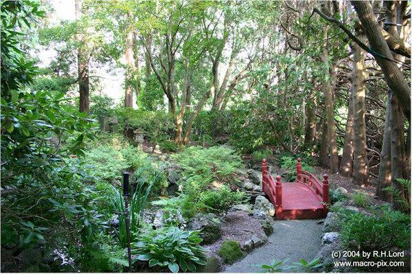 Japanese Garden, Fuller Gardens