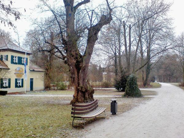 Regensburg Stadtpark, Winter