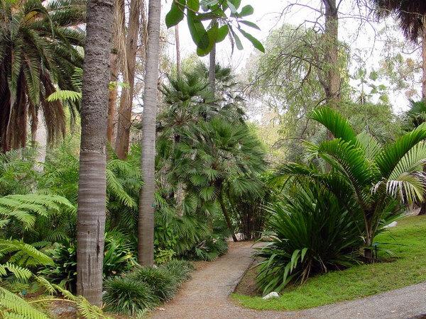 Mildred E Mathias Garden, California