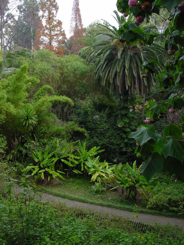 Mildred E Mathias Garden, Los Angeles