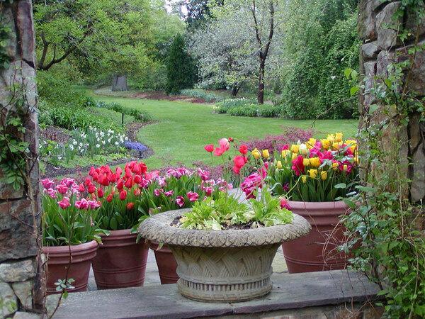 Henry M. Flagler Perennial Garden, Lewis Ginter Botanical Garden