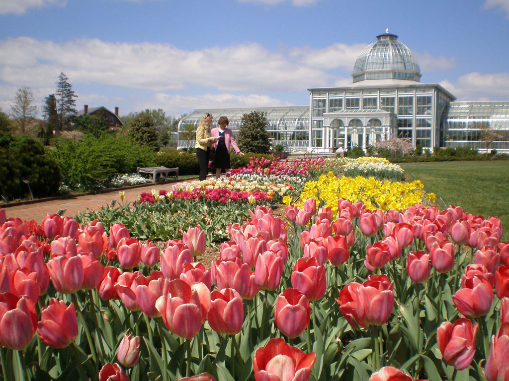 lewis ginter botanical garden - Lewis Ginter Botanical Garden