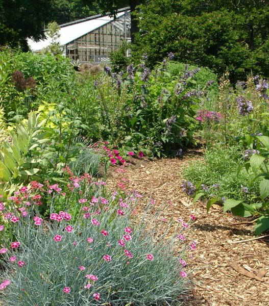 Bartlett Arboretum Gardens, CT