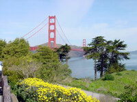 Medium golden gate california original