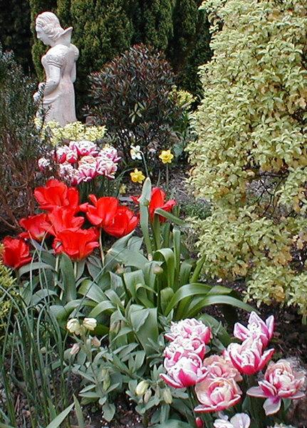 Statue, Boyce's Garden