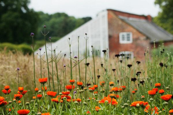 Kelmarsh Hall Gardens, Northamptonshire