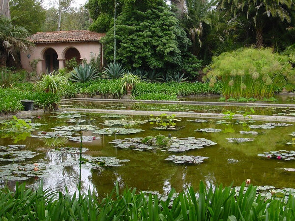 Pond, Lotusland