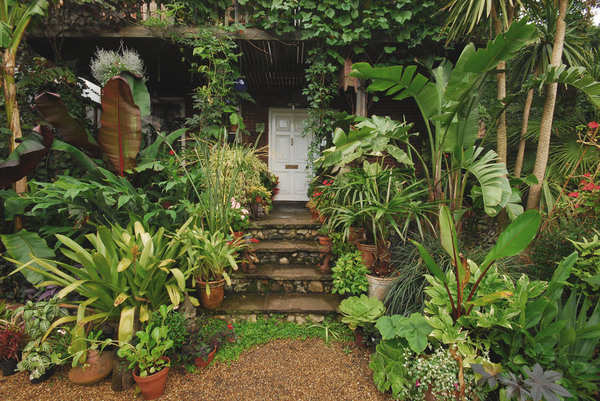 The Exotic Garden, Norwich