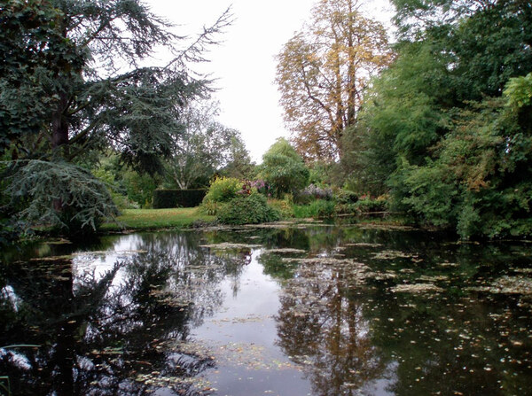 Pond, Feeringbury Manor Garden
