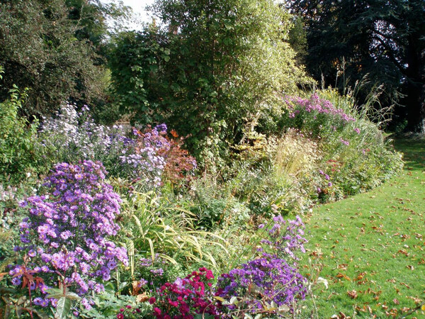 Border, Feeringbury Manor Garden