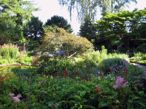 Karl Foerster Garden