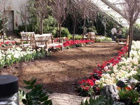 Exceptional Foellinger Freimann Botanical Conservatory, Fort Wayne