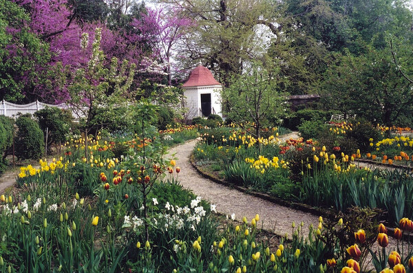 Upper Garden, Mount Vernon Estate