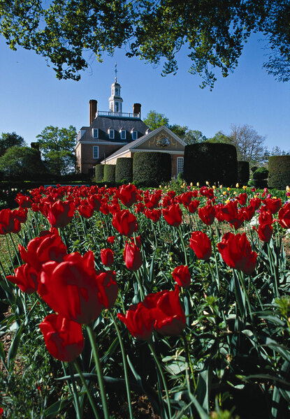 Governor's Palace, Colonial Williamsburg Gardens