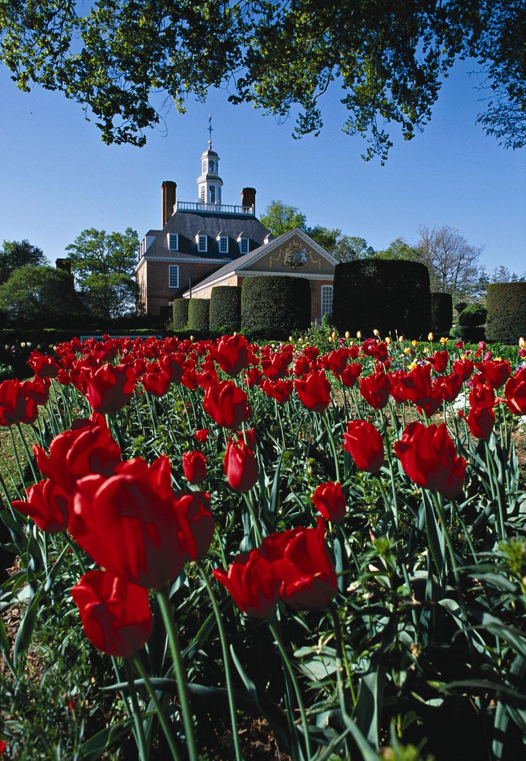 Governoru0027s Palace, Colonial Williamsburg Gardens