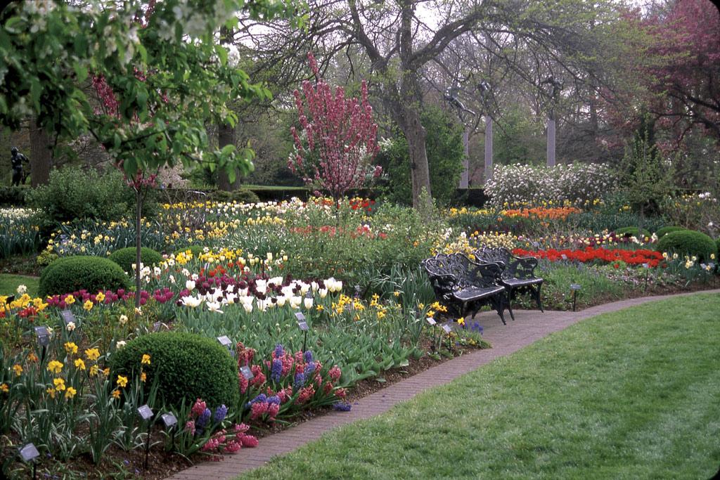 Samuels Bulb Garden, Missouri Botanical Garden